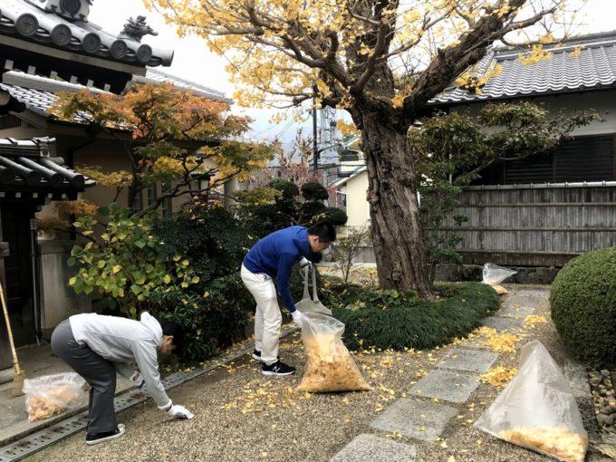 西教寺落葉掃除