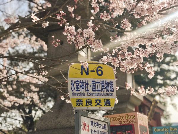 東大寺ボランティア21年3月